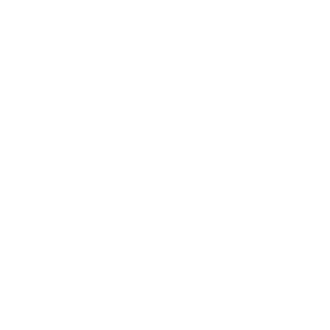 FAQ Manager With Structured Data Logo