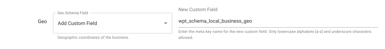 Geographic Co-ordinates - Local Business Schema - WordPress Schema Plugin